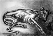 Charcoal picture of Silver - links to  larger image